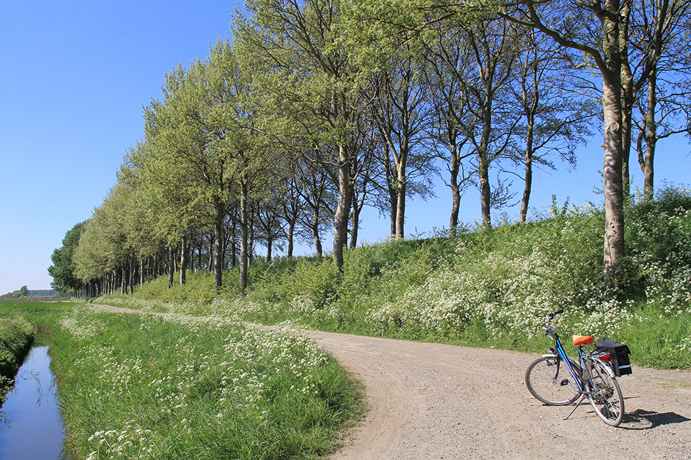 a bicycle at an unpaved road in the beautiful dutch rural landsc