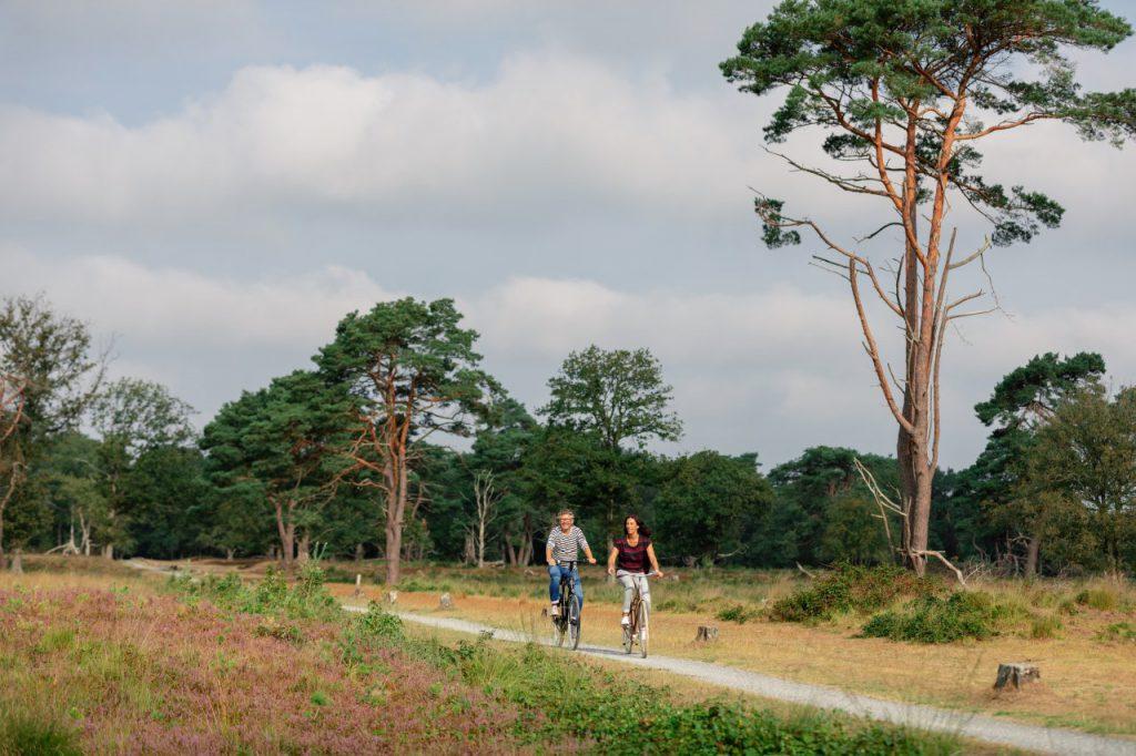 Drenthe-fietsvakantie-1