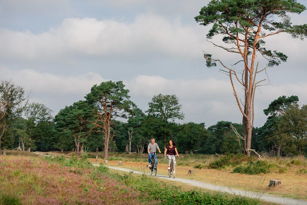 FENZopreis_Drenthe-fietsvakantie